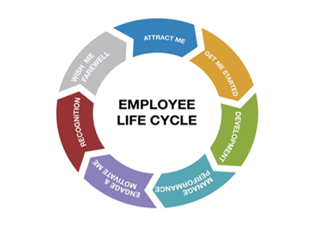 "So what's an employee ""experience""? featured image"