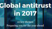 Global antitrust investigations - mitigating risk