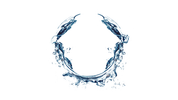 Let it flow: liquidity management and ILAAPs for banking applicants
