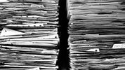 Merger control filings in Austria: more information and time now needed