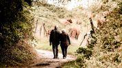 Pension Schemes Bill - Retrospective or not?