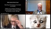 The Hazards of Virtual Hearings