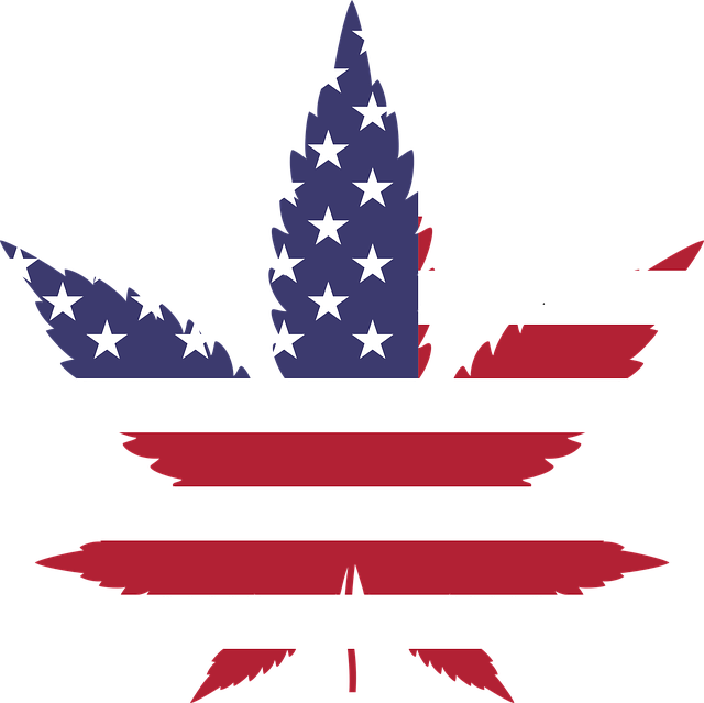 """Who would have thunk it?  Even some of the most traditionally """"conservative"""" states support some degree of cannabis legalization featured image"""