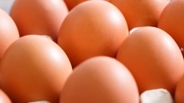 Contaminated egg scandal widens to UK and France featured image