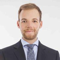 Fabio Busetto, Deloitte