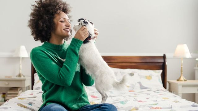 Pet insurer Bought By Many snaps up £80m boost featured image