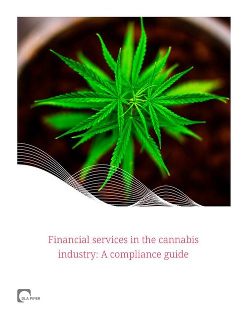Financial Services in the Cannabis Industry: A Compliance Guide featured image