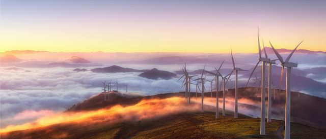 Defining the role of sustainability in EU competition law: A flurry of important developments | LinkingCompetition | Blog | Linklaters featured image