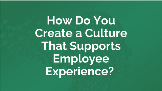 How Do You Create a Culture That Supports Employee Experience? featured image