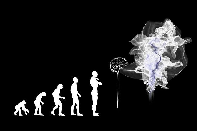 AI, human evolution or humanity obsolescence? featured image