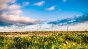 These 5 CleanTech Startups from Germany are Changing the Game
