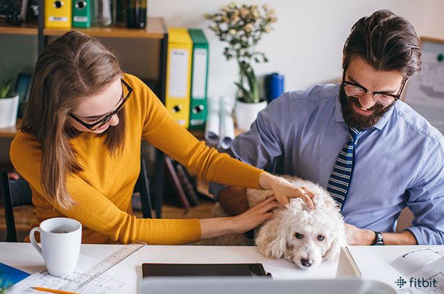 Why having a dog in the office is great for Equinet featured image