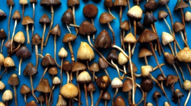 Chemical found in magic mushrooms may treat depression featured image