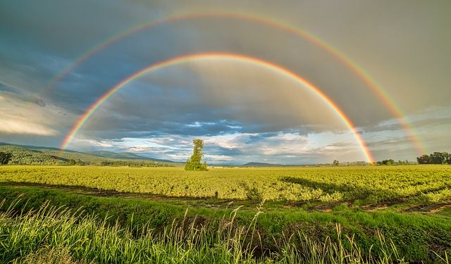 £160million in convergence funding and an additional £51.4million awarded to Scottish agriculture after a long battle — the pot of gold at the end of the rainbow? featured image