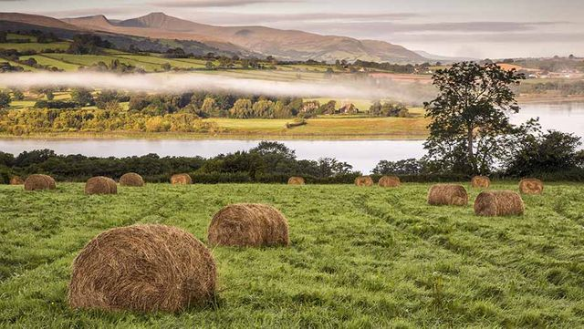 Agricultural Wages in Wales to Rise featured image