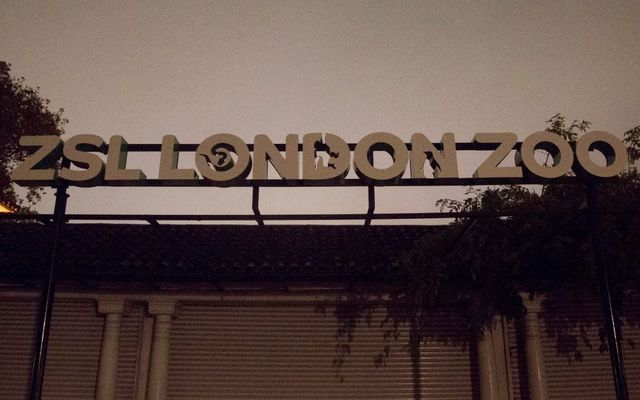 London Zoo fined £40k for H&S failings featured image
