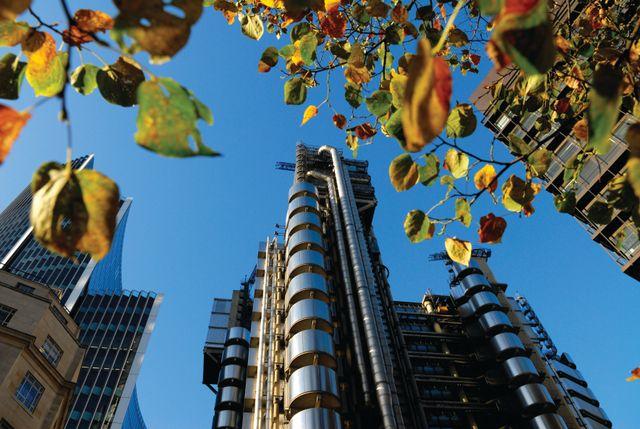 UK joins International Platform on Sustainable Finance featured image