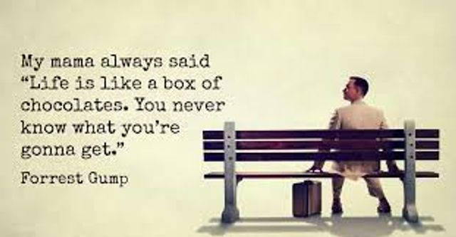 """Life is like a box of chocolates.."" featured image"