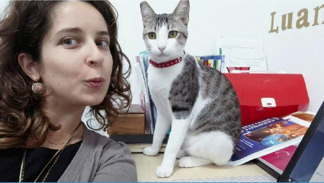 Meet Seedy, the purr-fect colleague featured image