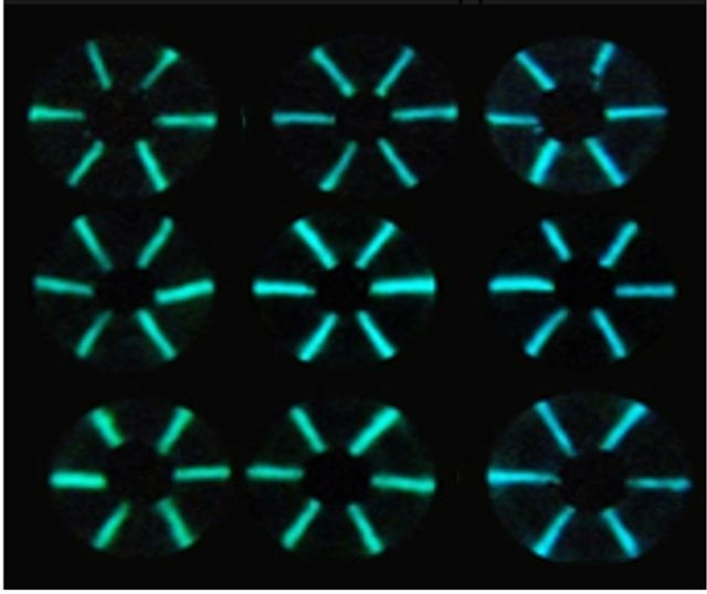 Lighting the way for user-friendly antibody detection featured image