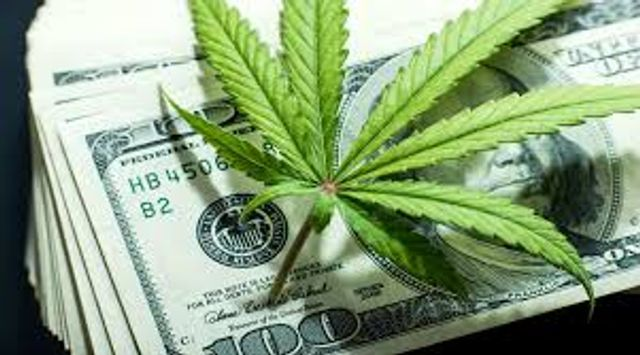 Turning over a new leaf: Cannabis, UK investors and the Proceeds of Crime Act 2002 featured image