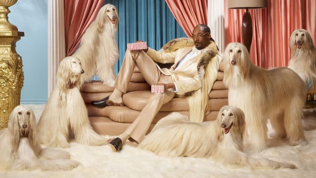 'Smoooth Dogg': Snoop Dogg just backed a Swedish online payments unicorn featured image