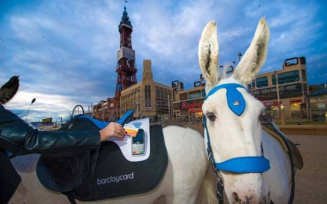 Cash is a pain in the ass: Blackpool donkey goes contactless featured image