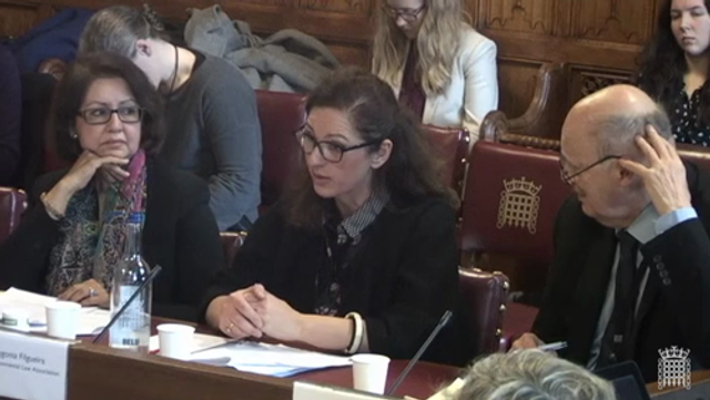 Who will uphold environmental law after Brexit? My evidence to the House of Lords featured image