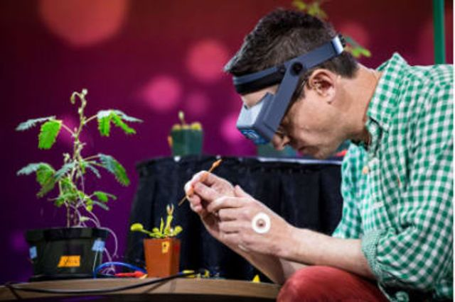Cyborg plants could be the future of human/technology interactions featured image