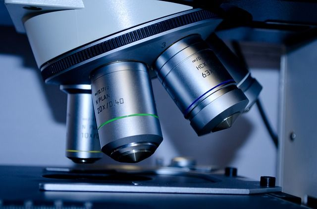 Pathologists shortage delaying cancer diagnosis featured image