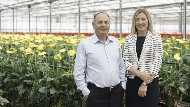 Family Businesses set to grow featured image