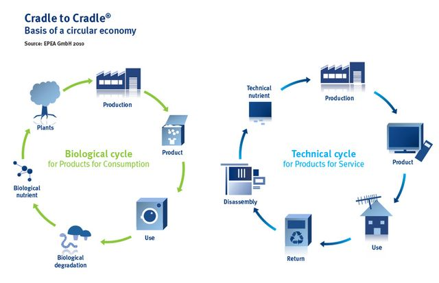 Cradle to Cradle developments: how sustainability could prove a smart investment and reduce our environmental impact featured image