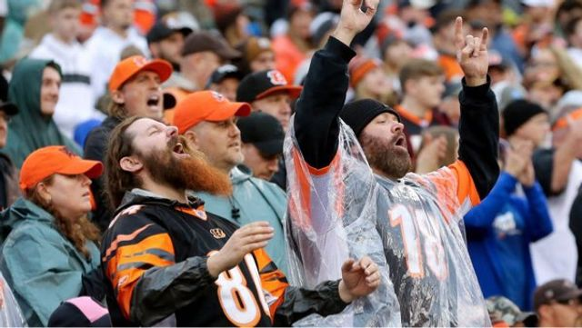Is being a Bengals fan or a Browns fan treatable with cannabis? featured image