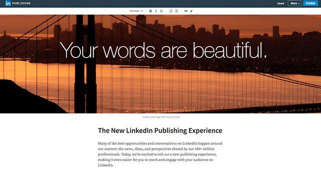 Raising your professional profile via LinkedIn featured image