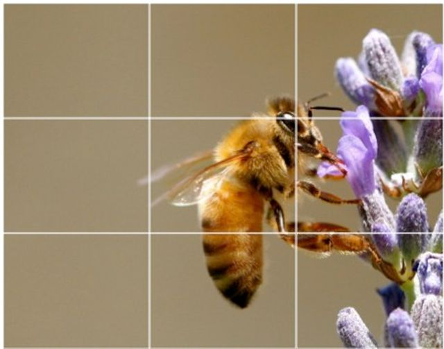 The rule of thirds for content featured image
