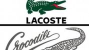 SNAP - all crocodile brands are the same! (Or not ...)