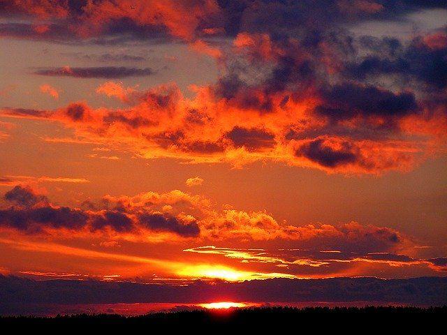 """ACHTUNG: """"Emotet Red Dawn"""" ist zurück featured image"""