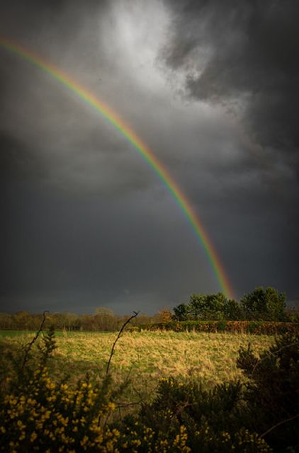 Lifetime Isas and pots of gold featured image