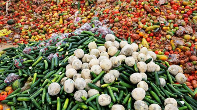 Let's talk about Food Waste, not just Plastic Waste featured image