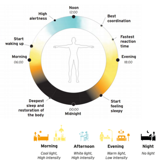Lighting Europe and IALD position on Human Centric Lighting featured image