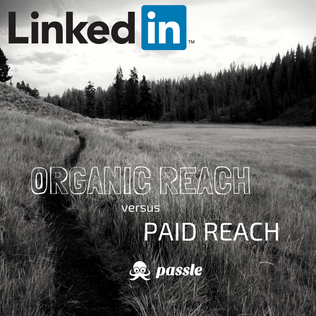 Organic reach versus paid reach on LinkedIn featured image