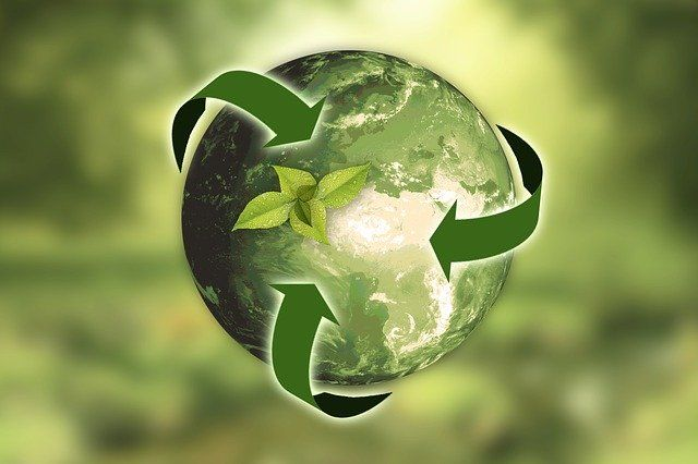 Recycling of PPE's into biofuel featured image