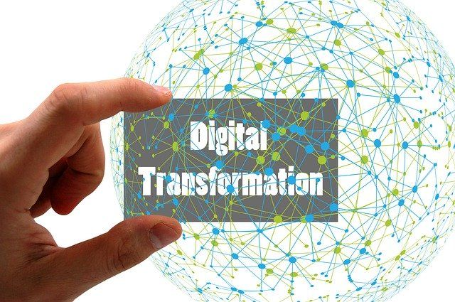 Phases of Digital Transformation Maturity: from Stunted Awareness to Sustained Vitality featured image