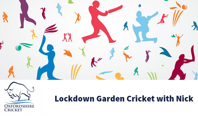 Lockdown cricket! Four ways to participate from home featured image
