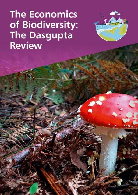 """The Dasgupta Review: """"transformative"""" change to our economies to value nature featured image"""
