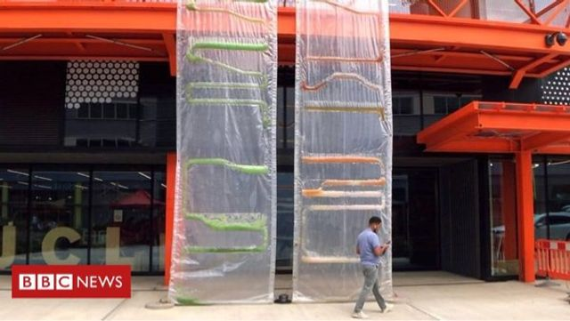 Are Algae Curtains the New Green Walls? featured image