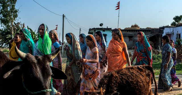 India's Missing Girls Problem Entrenches Demographic Risks featured image