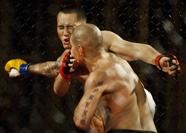TKO for MMA Fighter's False Ad Claim Against Retailer Based on Its Form 10-K featured image