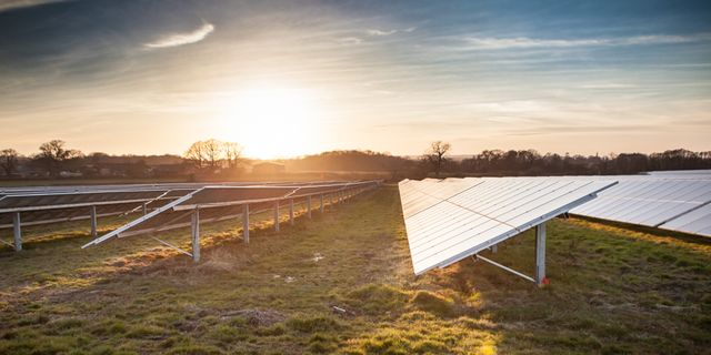 UK: Vorsichtiger Optimismus am Solar Independence Day featured image