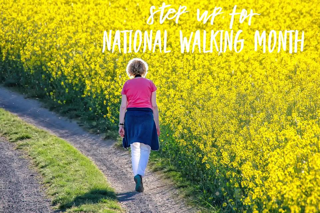 Step Up For National Walking Month featured image